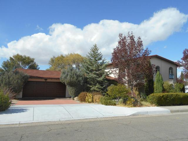 1109 Santa Ana Avenue SE, Albuquerque, NM 87123 (MLS #907616) :: Your Casa Team