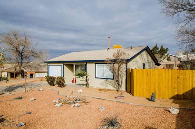 497 Chippewa Drive SW, Rio Rancho, NM 87124 (MLS #907648) :: Rickert Property Group
