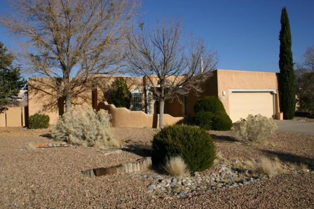 6755 Silver Creek Drive NE, Rio Rancho, NM 87144 (MLS #907663) :: Rickert Property Group