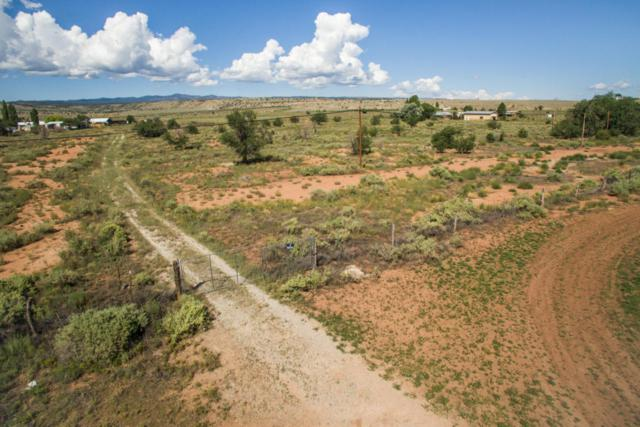 0 Evans Lane, Milan, NM 87021 (MLS #907863) :: Campbell & Campbell Real Estate Services