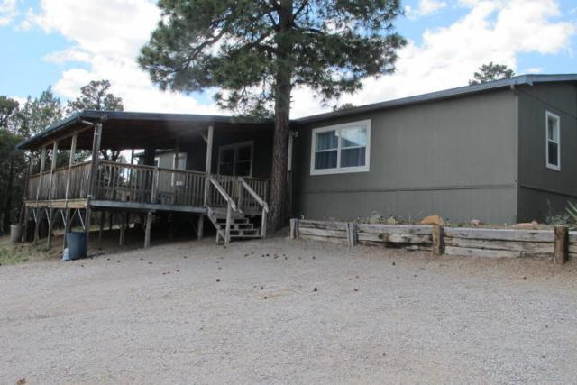 9 Damascus, Tijeras, NM 87059 (MLS #908134) :: Campbell & Campbell Real Estate Services