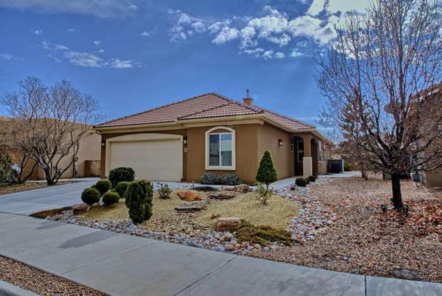 1006 Purple Aster Drive, Bernalillo, NM 87004 (MLS #908170) :: Campbell & Campbell Real Estate Services