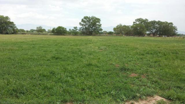 0 Land Of Patrocinio Gabaldon, Belen, NM 87002 (MLS #908215) :: Silesha & Company