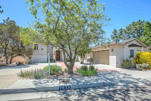 7925 Charger Trail NE, Albuquerque, NM 87109 (MLS #908245) :: Will Beecher at Keller Williams Realty
