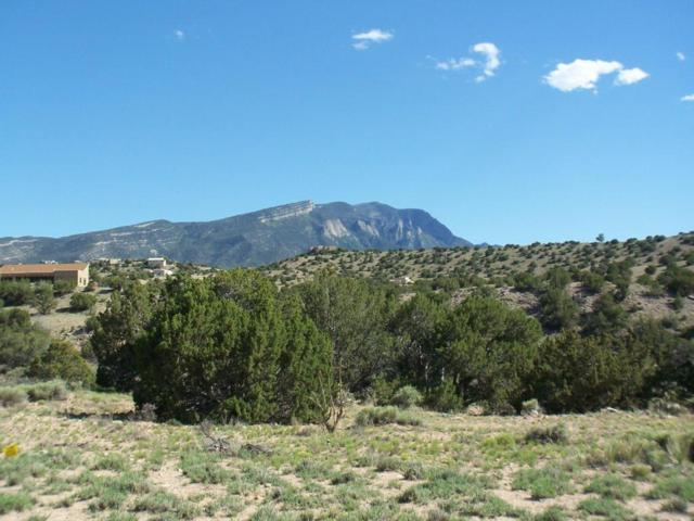 Windmill Trail, Placitas, NM 87043 (MLS #908246) :: Campbell & Campbell Real Estate Services