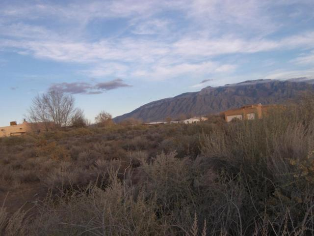 Perfecto Lopez, Lot F, Corrales, NM 87048 (MLS #908336) :: The Bigelow Team / Realty One of New Mexico