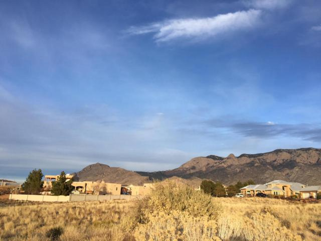 Eagle Rock Avenue NE, Albuquerque, NM 87122 (MLS #908382) :: The Bigelow Team / Realty One of New Mexico