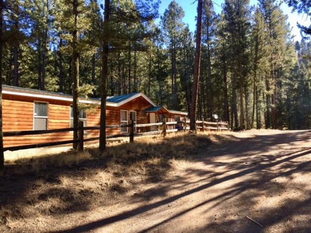 11 Lauer Lane, Jemez Springs, NM 87025 (MLS #908572) :: Campbell & Campbell Real Estate Services