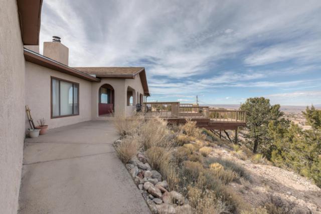 155 Juniper Road, Placitas, NM 87043 (MLS #908743) :: Campbell & Campbell Real Estate Services