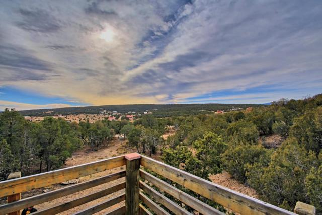 15 Rocky Ranch Road, Edgewood, NM 87015 (MLS #908908) :: Campbell & Campbell Real Estate Services