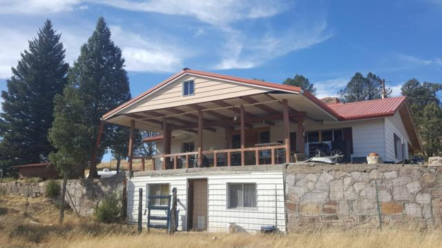 20 Martinez Road, Reserve, NM 87830 (MLS #908929) :: Campbell & Campbell Real Estate Services