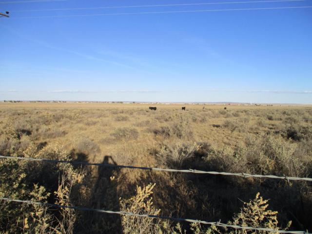 1499 Salt Mission, Moriarty, NM 87035 (MLS #908937) :: Campbell & Campbell Real Estate Services