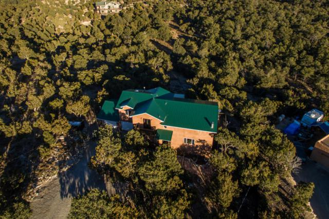 28 Angeles Vista Circle, Sandia Park, NM 87047 (MLS #908965) :: Campbell & Campbell Real Estate Services