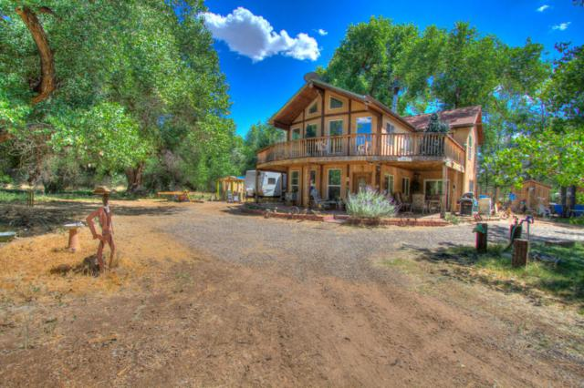 560 B Andrews Lane, Corrales, NM 87048 (MLS #908968) :: Campbell & Campbell Real Estate Services