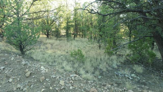 Bridger Pass, Datil, NM 87821 (MLS #908975) :: The Buchman Group