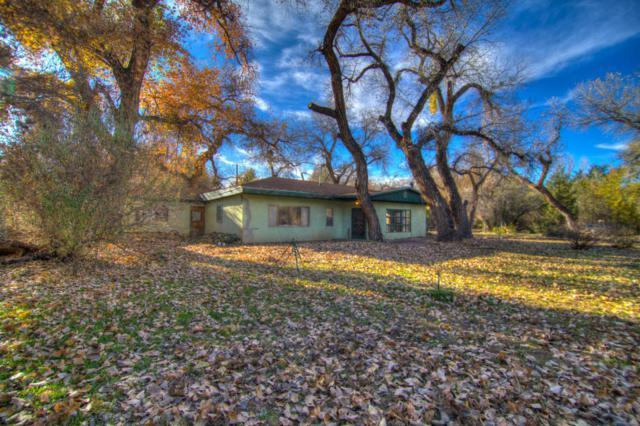 560 Andrews Lane, Corrales, NM 87048 (MLS #909005) :: Campbell & Campbell Real Estate Services