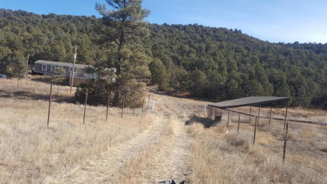 56 Pleasant, Edgewood, NM 87015 (MLS #909114) :: Campbell & Campbell Real Estate Services