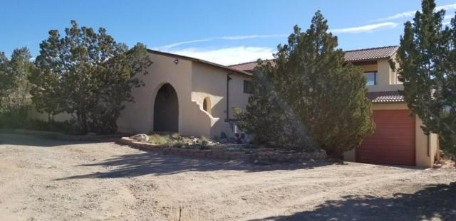 16 Calle Del Sol, Placitas, NM 87043 (MLS #909143) :: Campbell & Campbell Real Estate Services