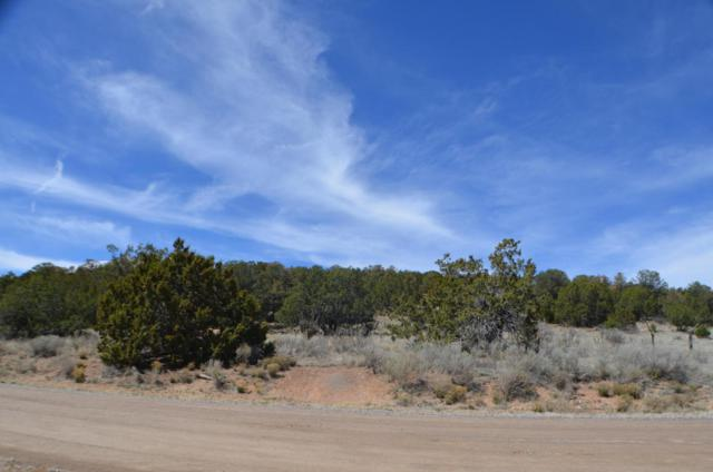 13 Camino Estribor, Edgewood, NM 87015 (MLS #909158) :: Campbell & Campbell Real Estate Services