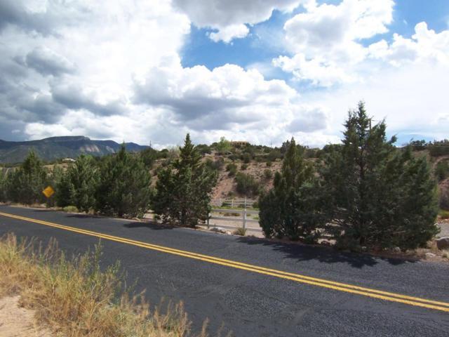 Juniper Rd, Placitas, NM 87043 (MLS #909201) :: Campbell & Campbell Real Estate Services