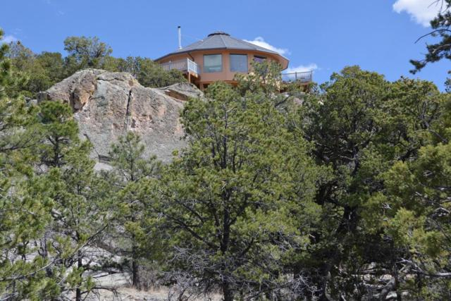 300 Northern Trail, Datil, NM 87821 (MLS #909217) :: The Bigelow Team / Red Fox Realty