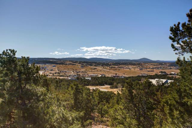 16 Premier Court, Sandia Park, NM 87047 (MLS #909331) :: Campbell & Campbell Real Estate Services