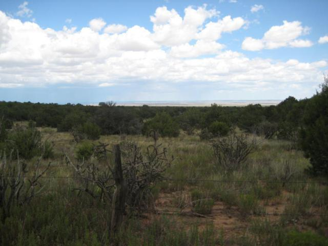1375 Nm-344, Sandia Park, NM 87047 (MLS #909349) :: Campbell & Campbell Real Estate Services