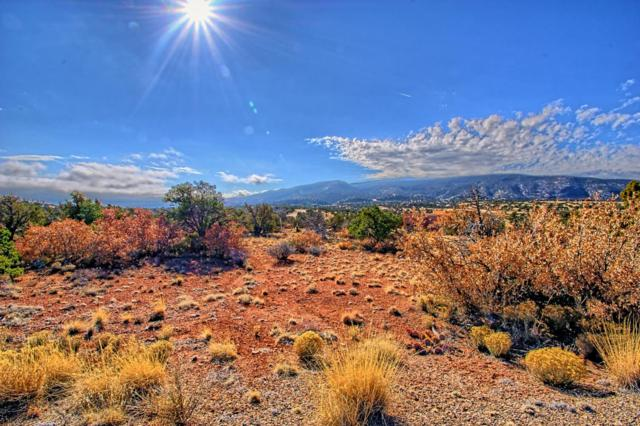 142 Diamond Tail Lot 45 Road, Placitas, NM 87043 (MLS #909364) :: Campbell & Campbell Real Estate Services