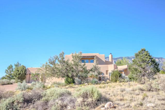 6104 Buffalo Grass Court NE, Albuquerque, NM 87111 (MLS #909366) :: Your Casa Team