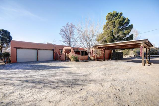 75 Four Wing Court, Corrales, NM 87048 (MLS #909375) :: Campbell & Campbell Real Estate Services