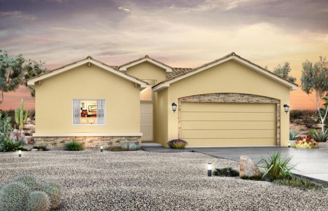 6821 Promenade Avenue NE, Albuquerque, NM 87109 (MLS #909379) :: Campbell & Campbell Real Estate Services