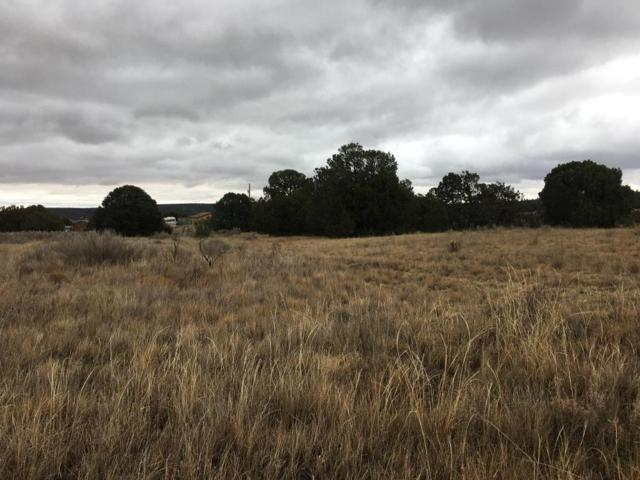 2 Towhee Trail, Tijeras, NM 87059 (MLS #909393) :: Campbell & Campbell Real Estate Services