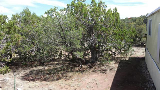 134 Homestead Trail, Datil, NM 87821 (MLS #909442) :: Campbell & Campbell Real Estate Services