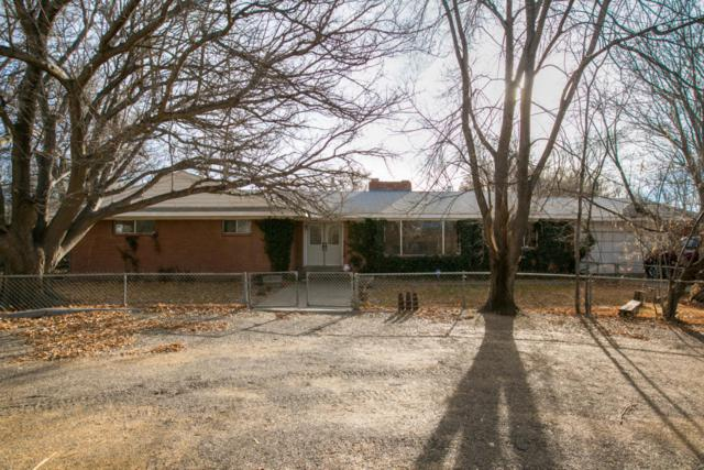 311 Schmidt Place SW, Los Lunas, NM 87031 (MLS #909459) :: Campbell & Campbell Real Estate Services
