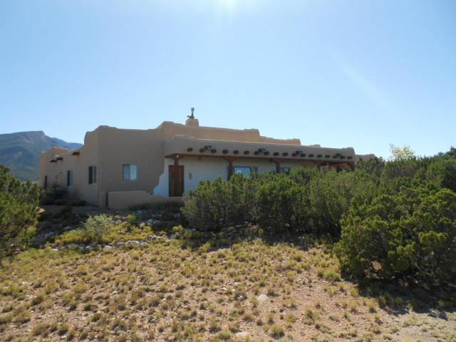 61 Overlook Drive, Placitas, NM 87043 (MLS #909494) :: Campbell & Campbell Real Estate Services