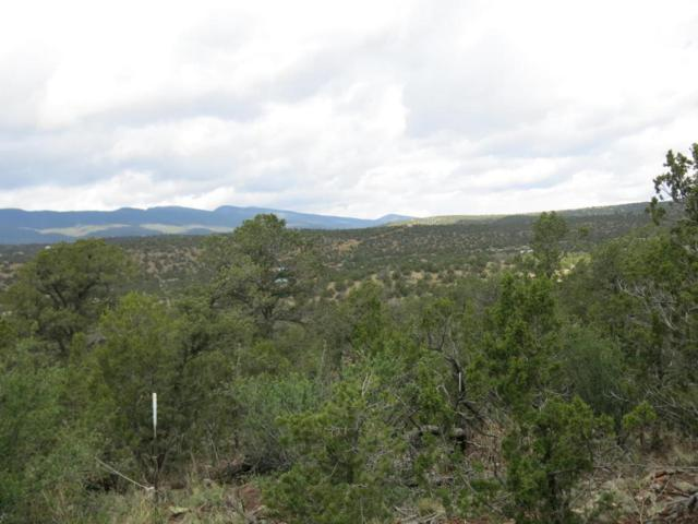 0 Rickrock, Tijeras, NM 87059 (MLS #909521) :: Campbell & Campbell Real Estate Services