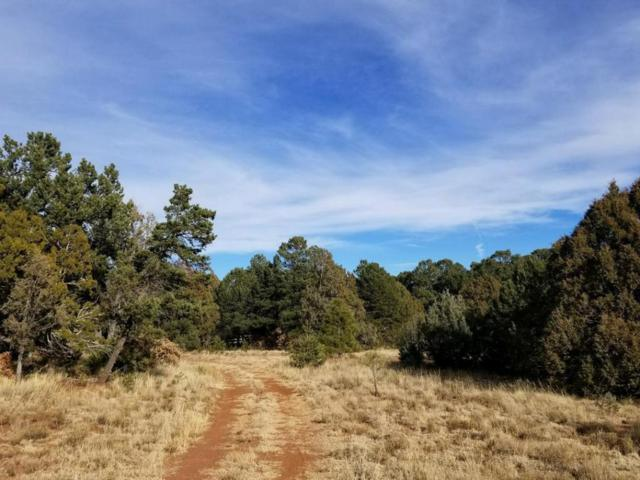 3 View Drive, Cedar Crest, NM 87008 (MLS #909826) :: Will Beecher at Keller Williams Realty