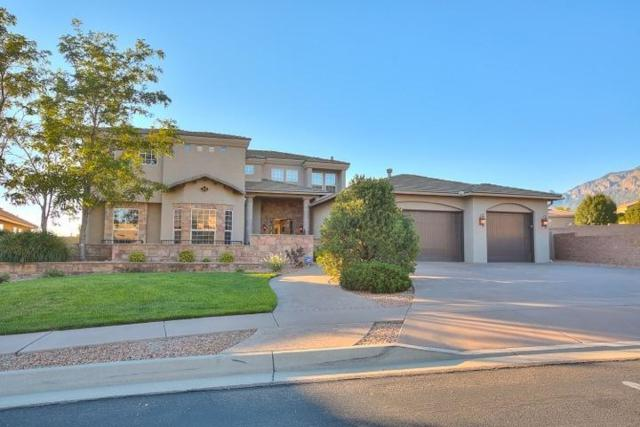 12919 Juniper Canyon Trail NE, Albuquerque, NM 87111 (MLS #909854) :: Your Casa Team