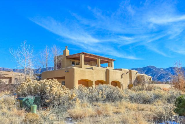 12916 Sand Cherry Place NE, Albuquerque, NM 87111 (MLS #909981) :: Your Casa Team