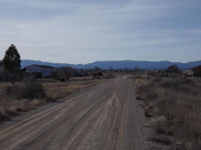 Karah Avenue, Estancia, NM 87016 (MLS #910122) :: The Bigelow Team / Realty One of New Mexico