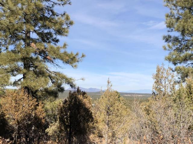 21 Mockingbird Drive, Tijeras, NM 87059 (MLS #910145) :: Campbell & Campbell Real Estate Services