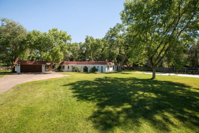 211 Meadowlark Lane, Corrales, NM 87048 (MLS #910237) :: Will Beecher at Keller Williams Realty