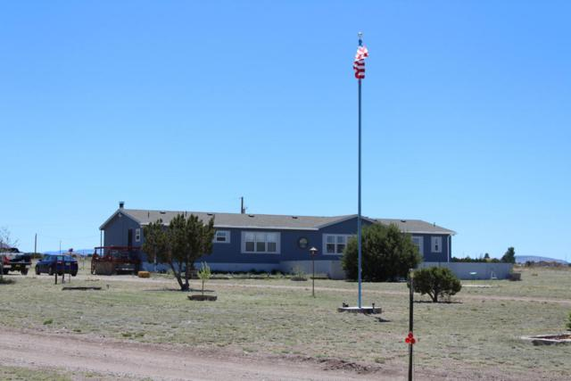 15 Golden West Loop, Magdalena, NM 87825 (MLS #910473) :: Campbell & Campbell Real Estate Services