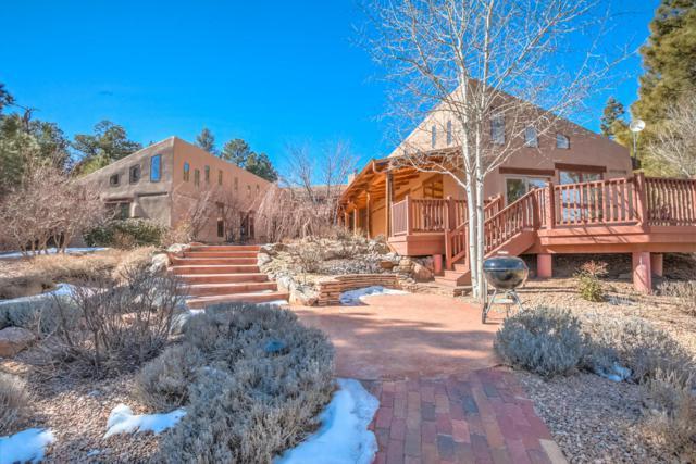374 Canon Madera Road, Sandia Park, NM 87047 (MLS #910567) :: Will Beecher at Keller Williams Realty