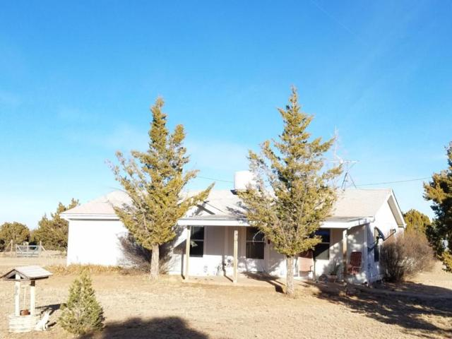 800 Cedardale Avenue, Mountainair, NM 87036 (MLS #910619) :: Campbell & Campbell Real Estate Services