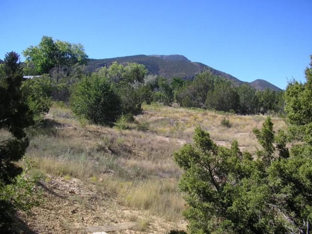 Camino De La Ciruela, Placitas, NM 87043 (MLS #910692) :: Your Casa Team