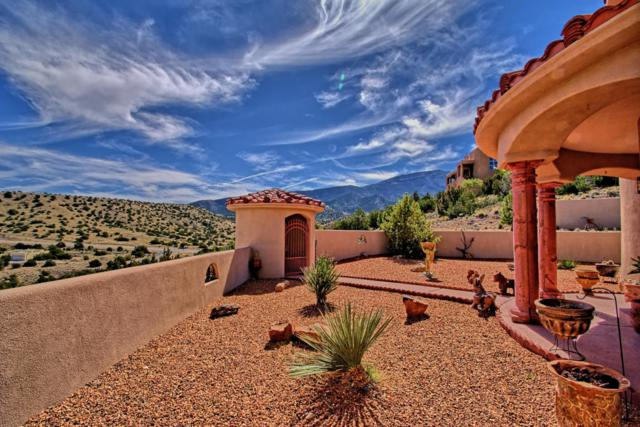 12 Vista De Oro, Placitas, NM 87043 (MLS #910697) :: Will Beecher at Keller Williams Realty