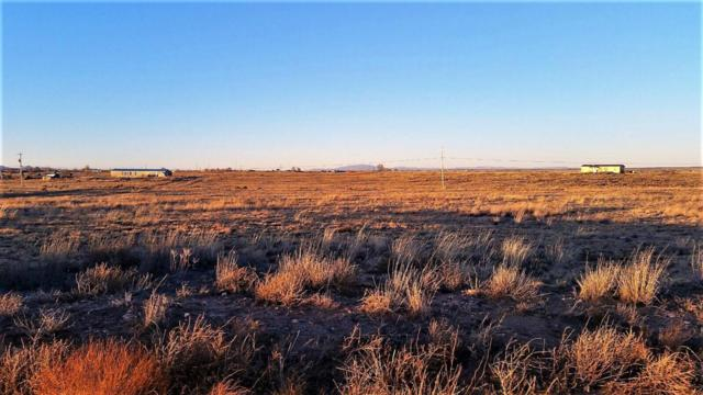 Palomino Drive, Lot 34, Moriarty, NM 87035 (MLS #910751) :: The Bigelow Team / Realty One of New Mexico
