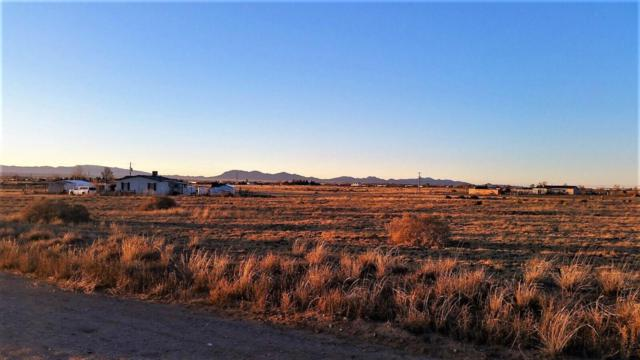 Palomino Drive, Lot 35, Moriarty, NM 87035 (MLS #910753) :: Campbell & Campbell Real Estate Services