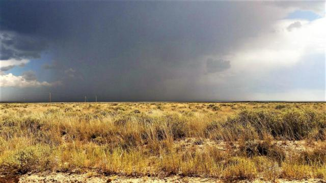 Palomino Road, Lot 3, Moriarty, NM 87035 (MLS #910756) :: Campbell & Campbell Real Estate Services